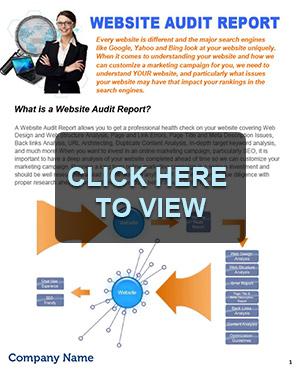web-audit-prev